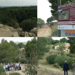 travail de terrain à Fleury d'Aude (11)